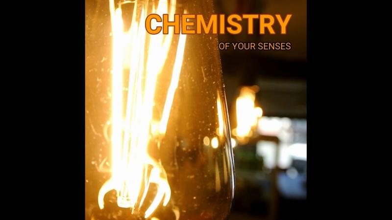 Chemistry of your senses - Ora