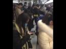 Зомбари, Китай, Пекин