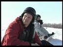 Сноуборд соревнования в х Горский Урюпинский р он 2011