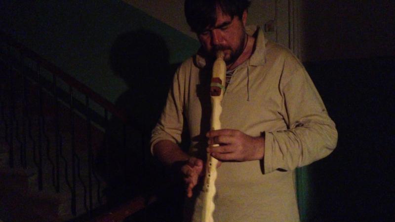 флейт 2