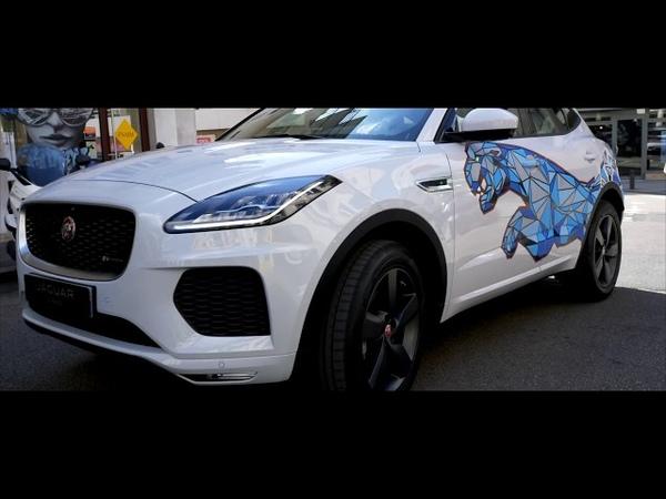 Un jaguar dans la ville master