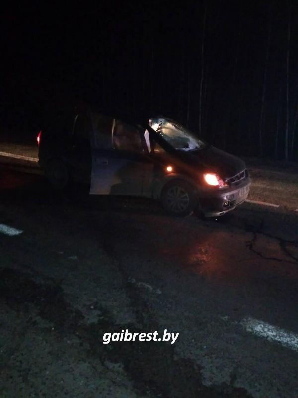 Мужчина после посещения кафе сел на проезжую часть и погиб под колёсами автомобиля