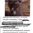Диана Дианова фото #43