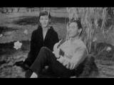 Barbara et Georges Moustaki - Fleur de m