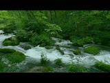 Japan beautiful nature