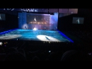 Dino Laiv — Live