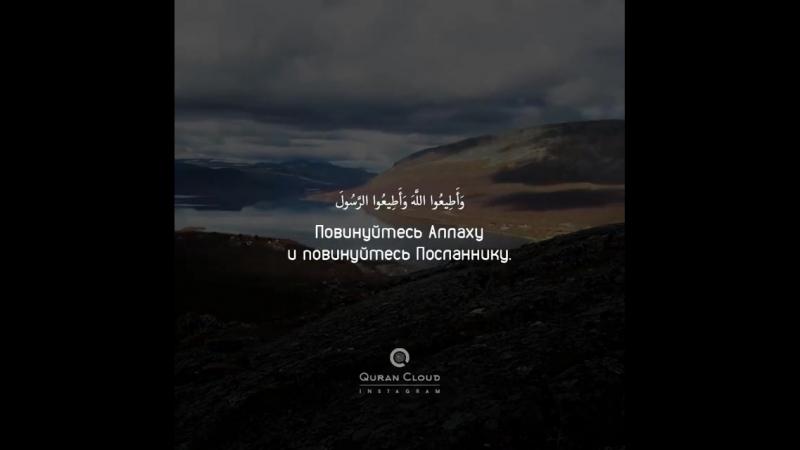 Раад Курди
