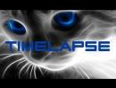 Timelapse алмазной мозаики