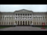 #видеоросгвардия ВНЕВЕДОМСТВЕННАЯ ОХРАНА РОСГВАРДИИ. САНКТ-ПЕТЕРБУРГ