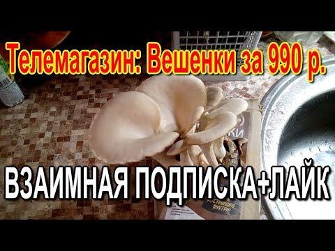 81. 2405 Муська. Грибы Вешенки почтой за 990 р. Взаимная подпискалайк.
