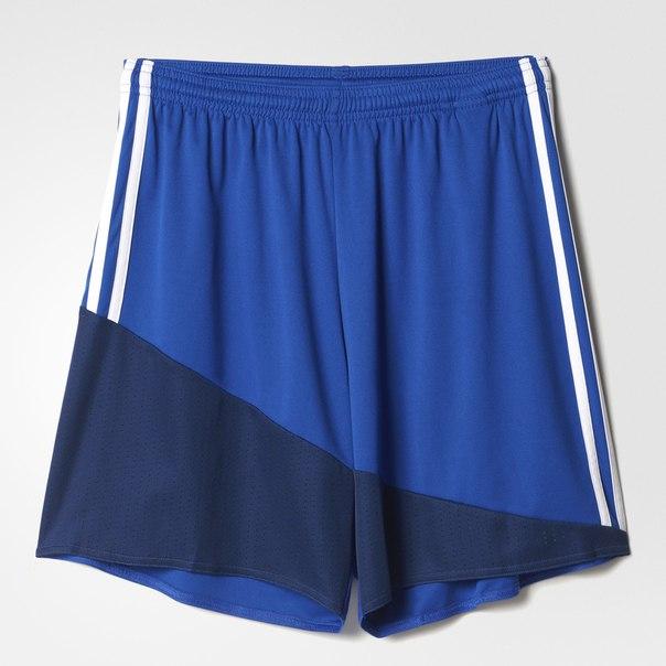 Спортивные шорты (трикотаж) REGI 16 SHO