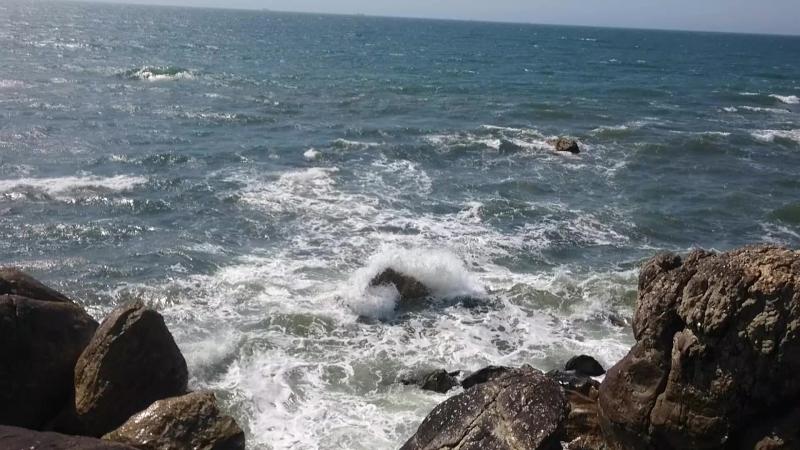 У океана