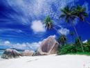 Полинезия-тропический рай 2.(Летнее местечкоВентурес)