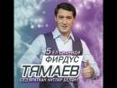 Концерт Фирдуса Тямаева в Оренбурге