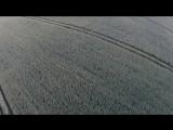Загадки человечества с Олегом Шишкиным. Выпуск 18 от 18.07.2017