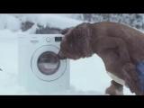 Реклама стиральной машины Samsung