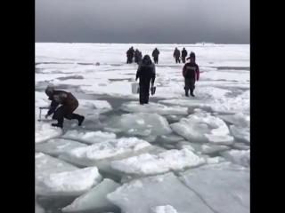 Зимняя рыбалка pbvyzz hs,fkrf