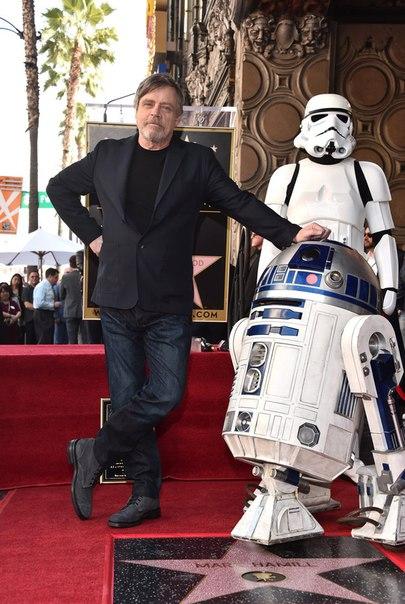 """Актёр Марк Хэмилл, известный российским зрителям по роли Люка Скайуокера в киноэпопее """"Звёздные войны"""", получил собственную звезду на Аллее славы Голливуда в Лос-Анджелесе."""