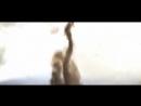 Нереально красивые кадры Торнадо СМОТРИМ! The most beautiful tornado!.mp4