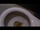 Парк-Хаус, 2 этаж, 10:56, женский туалет