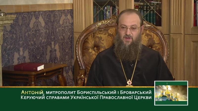 👦👧 Церковь предъявляет высокие требования к семье, семейной жизни👨👩Идеал христианской семьи👴👵