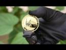 Australian Bird of Paradise looks stunning on gold and silver bullion coins