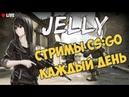 🔥Стрим по CS GO от Jelly. Девушка сильвер