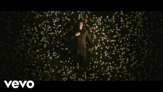 Shawn Mendes - In My Blood (Official Music Video) [WideTide]