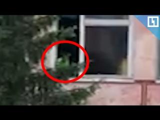 Ребёнок вылез из окна детского сада