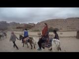 Petra donkey trekking!