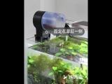 Brand New Aquarium Fish Feeder