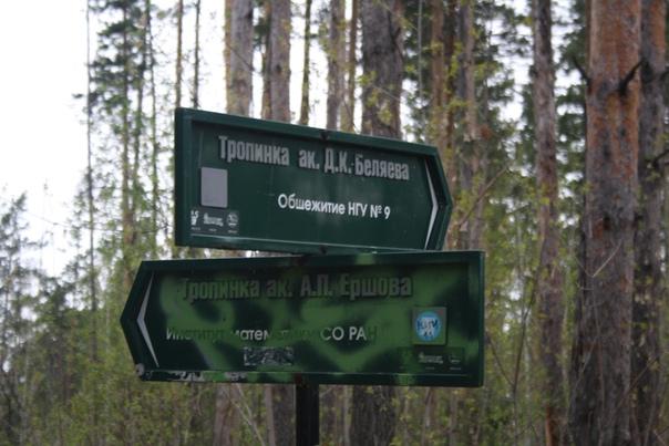Указатель в Академгородке. Прикольно, что даже тропинки в лесу имеют названия.