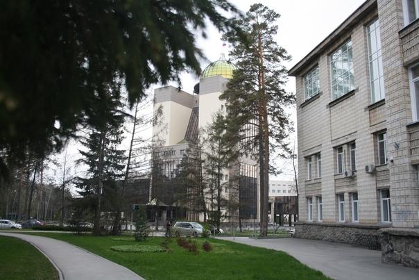 Институт философии и права, Юридический факультет, отделение безвкусицы.