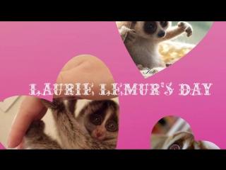 День Лори лемуров