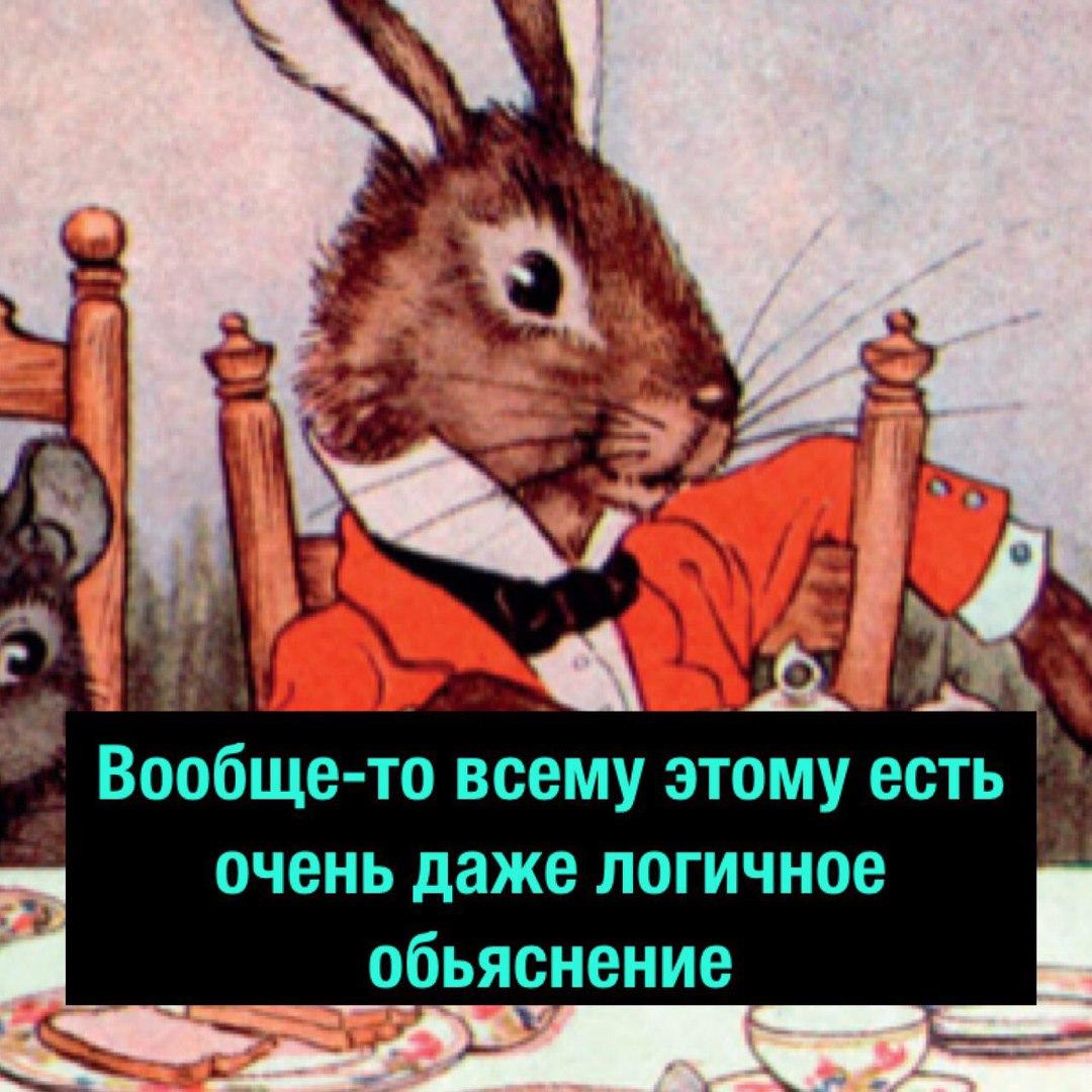 https://pp.userapi.com/c834301/v834301720/576d1/4jrR8Vxs9Nc.jpg