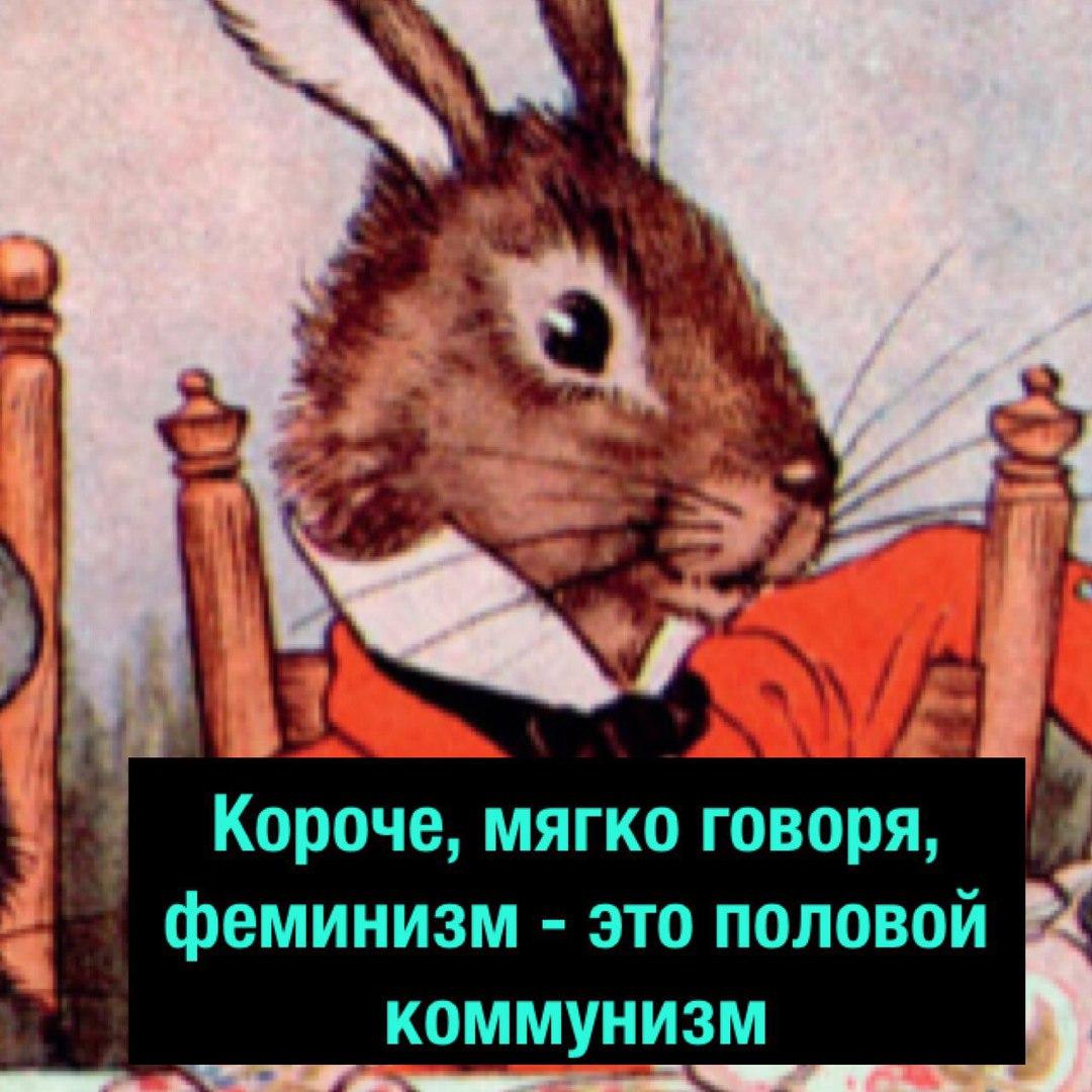 https://pp.userapi.com/c834301/v834301720/5770d/lu8JG9qAuyU.jpg