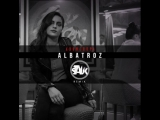 AronChupa - Im an Albatraoz