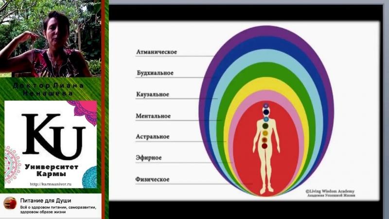 Урок 5.Интегративная Диетология. Истинные причины заболеваний ЖКТ и лишнего веса. ?