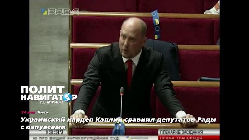 Украинский нардеп Каплин сравнил депутатов Рады с папуасами