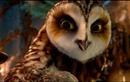 Видео к мультфильму «Легенды ночных стражей» (2010): Трейлер (дублированный)