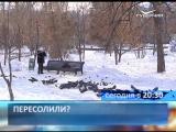 Новости губернии 18 января Анонс