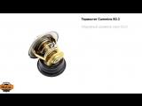 Термостат для двигателя Cummins B3.3 (C6004216120)