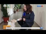 В Красноярском зоопарке настоящий бэби-бум. Вы только посмотрите, какие они милые!
