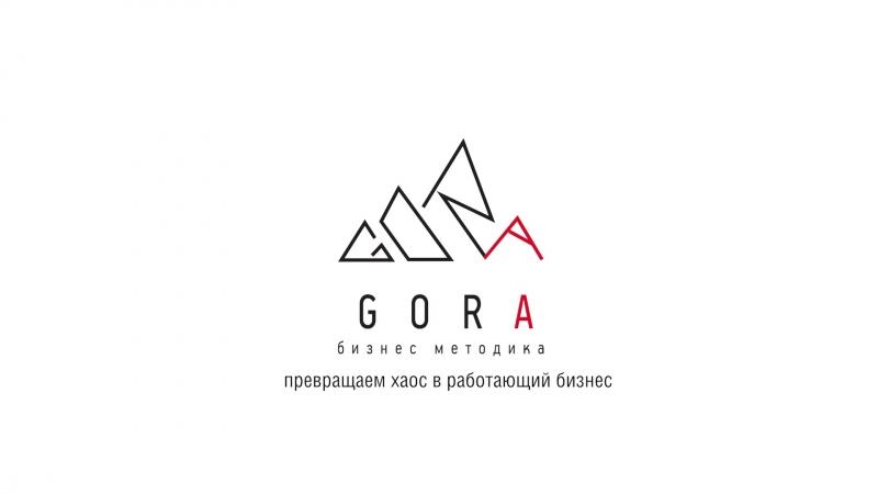 Что такое GORA Тизер интервью с Алексеем Горшениным, автором методики GORA.