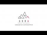 Что такое GORA? Тизер интервью с Алексеем Горшениным, автором методики GORA.