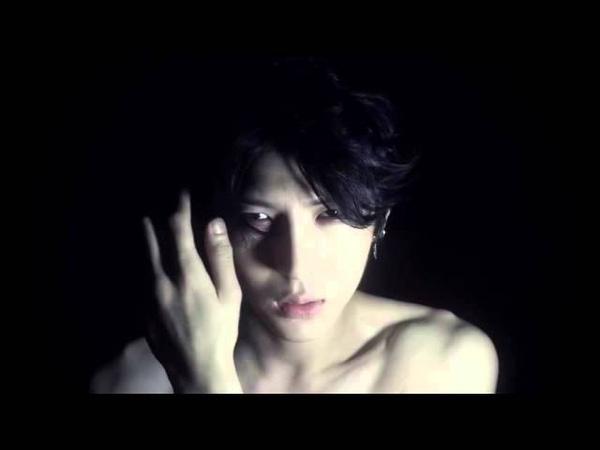 VIXX LR - Beautiful Liar (fanmade)