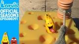 Exclusive - Official Cheese - Larva Season 3 Episode 91