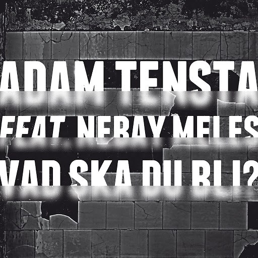 Adam Tensta альбом Vad ska du bli? (feat. Nebay Meles)