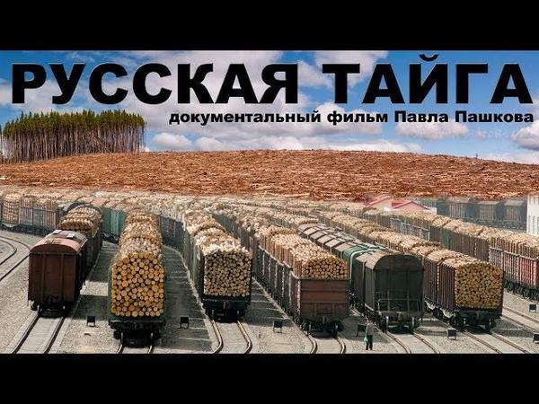 РУССКАЯ ТАЙГА документальный фильм Павла Пашкова