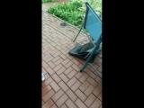 20.06.18 Ураганный ветер
